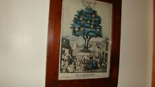 Antique Tree Of Life Lithograph Print Framed
