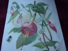 Old Trade Card.. J L Mahan   Vose & Sons Pianos    Clinton Iowa