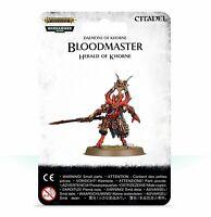 Blades of Khorne Bloodmaster, Herald of Khorn - Warhammer AoS - New! 97-62C