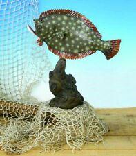 "Taxidermy Fluke Trophy 12""  /Fish Mount Replica"