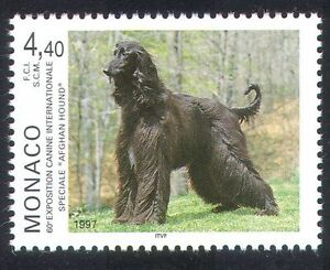 Monaco 1997 Afghan Hound/Dogs/Animals/Nature/Pets 1v (n34718)