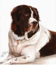 Photograpy PORTRAIT SERVICE Oil Painting 1 Pet 16x20 Commission Art Artwork