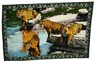 Vintage Turkey Bengal Tigers Velvet Tapestry Wall Hanging 100% Cotton New