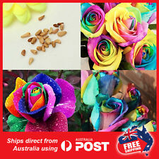 200pcs  Rainbow Rose Seeds Home Garden  Colorful Flower Plant Seeds Love Heart