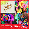200 x  Rainbow Rose Seeds Home Garden  Colorful Flower Plant Seeds Love Heart