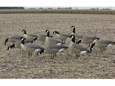 Avian X-9033, Flocked Outfitter Lesser Canada Goose Decoy's Mpg1637