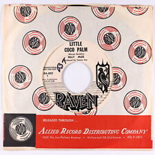 Surf Exotica Inst. 45 - Billy Mize - Little Coco Palm - Raven - VG++ mp3