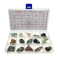 Metamorphic Rock Specimen Metamorphic Teaching Aid Supplies w/ Box Ages 8 up