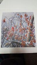 Bittersweet Winter-Cardinal by Seerey-Lester AP31/56