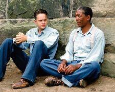 Shawshank Redemption, The [Freeman/Robbins] (55878) 8x10 Photo