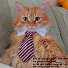 Cute Cats Ties Cat Collars Pet Bow Ties Funny Cat Dog Costume Ties Cat Collar