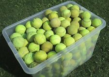 Used Tennis Balls GRADE B Ideal Dog Toys/Chews/Cricket 4, 6, 15, 20, 30, 50, 60