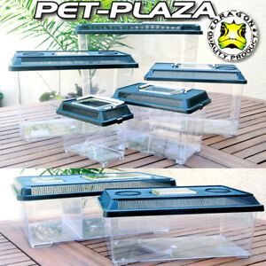 Dragon PET PLAZA Faunabox  Kunststoff Terrarium Faunarium