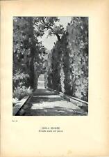 Stampa antica ISOLA MADRE sul Lago Maggiore 1939 Antique print