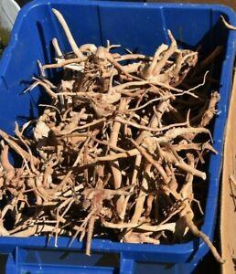 CHEAP REDMOOR WOOD 20cm min - aquarium root - fish tank moss java fern plant
