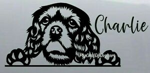 Cavalier King Charles Spaniel Peeking Dog Car Decal Vinyl Sticker