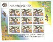 Russia 1994,Mini Sheet,Birds,Ducks,Conservation of Waterfowl,VF MNH**