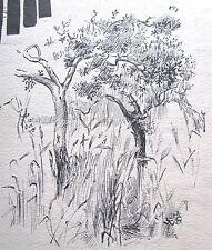 "JEAN P. SUTHERLAND AUSTRALIAN INK SKETCH ""TREES & DESIGN"" C 1960"