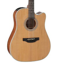 Takamine Gd20Ce G20 Dreadnought Cutaway Acoustic Electric Guitar Natural Satin
