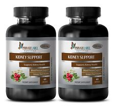 Wild Blueberry Powder - KIDNEY SUPPORT FORMULA - immune support pills - 2 Bottle