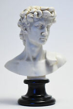 Statue Busto del David di Michelangelo - Bust of David (Made in Italy)
