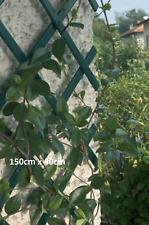 1GREEN Expanding Trellis Plastic Garden Trellis 150 X 40cm 1.5m New PVC