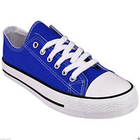 NEW LADIES WOMENS FLAT GIRLS PLIMSOLLS PUMPS SNEAKER LACE UP CANVAS CASUAL SHOES