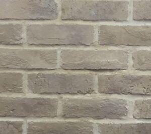 Portland Blend Brick Slips, Wall Cladding, Feature Wall, Brick Tiles SAMPLE
