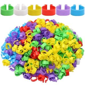 100Pcs Foot Ring For Chicken Duck Goose Poultry Buckle Leg Label Without Text