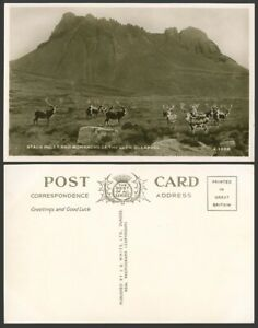 Ullapool Stack Polly and Monarchs of Glen Stag Deer Rock Ross-Shire Old Postcard
