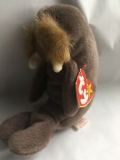 Collectible Jolly The Walrus Ty Beanie Baby 1996 4082 Pvc Pellets