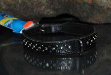 Lederhalsband SPIRiT 50cm x 24mm Ziernieten schwarz Französische Bulldogge Mops