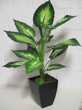 Deko Dieffenbachia künstlich Pflanze Topf Seidenblumen Grünpflanze wie echt Neu