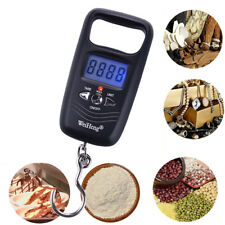 Mini 50KG Double Precision Digital LCD Electronic Fishing Hook Hanging Scale