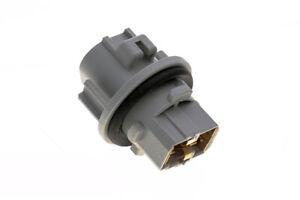 Nissan Altima Frontier Maxima Pathfinder Left or Right Headlight Lamp Socket OEM