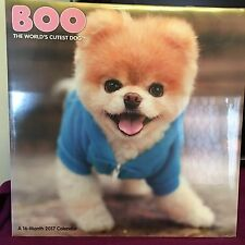Boo The World's Cutest Dog 2017 Wall Calendar 16 Months New Sealed Free S/H