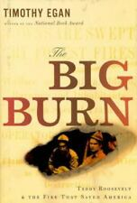 The Big Burn : Teddy Roosevelt and the Fire That Saved America by Jeanette Ingol