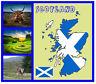 Escocia Mapa - RECUERDO Original Cuadrado Imán de NEVERA - MONUMENTOS/Banderas/