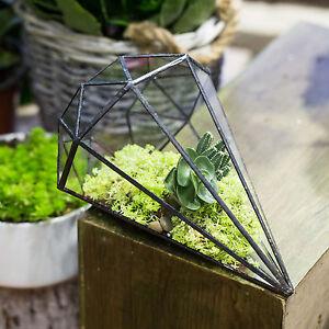 Long Diamond Glass Geometric Terrarium Succulent Box Planter Fern Miniature Gift