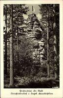 1955 s/w Postkarte Sachsen Wald Partie Bäume Greifensteine Ehrenfriedersdorf