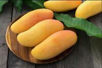 Mahachanok Thai Mango