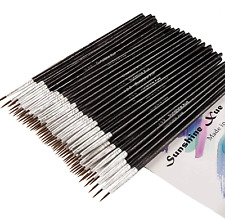 Pointed Round Detail Paint Brushes for Acrylic Oil Watercolor Art Painting,60 Pc