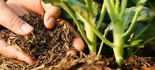 Ceylon Natural Compost Fertilizer+Cow Dung Soil Conditioner Plant+Tree 60g Flowe