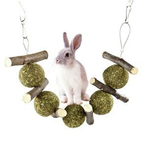 Guinea Rabbit Pig Chinchilla Pet Grass Ball Branch Molar Chew Play Teething Toy
