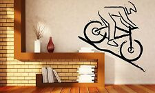 Wall Vinyl Sticker Decal Mountain Bike Racer Rugged Terrain Competition (n270)
