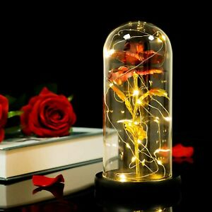 UK STOCK Rose Dome Lights Beauty and The Beast Rose in a Glass Bell Jar With LED