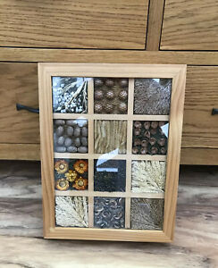 Country Farmhouse Wooden Storage Box With Seeds Grasses Buds & Pods In Lid