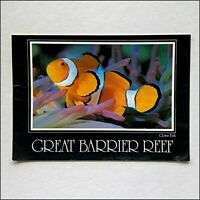 Clown Fish and Anemone Great Barrier Reef 1984 Postcard (P429)