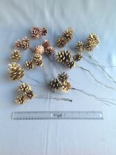 Collection Of Gold And Bronze Sprayed Pine Cones