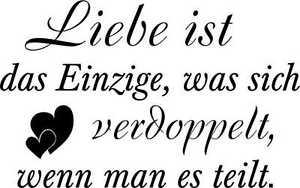 Wandtattoo Aufkleber Liebe ist das Einzige..+Doppel Herz 4 Gr. inkl. Rakel W200